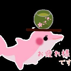 PINKイルカの日常