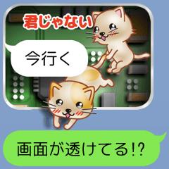 [LINEスタンプ] 画面の裏の猫