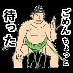ハッケヨイ!きどく富士!