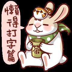 フェイトゥ ウサギ 3