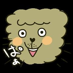 アルパカ(クマいっぱい)