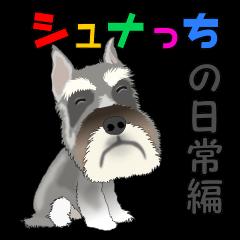 シュナっちの日常編