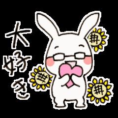 新婚眼鏡ウサギ