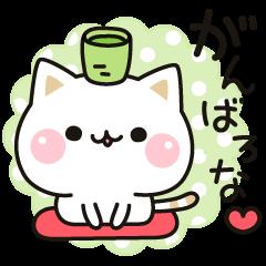 気づかいのできるネコ♪関西弁編