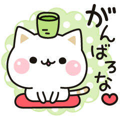 [LINEスタンプ] 気づかいのできるネコ♪関西弁編 (1)