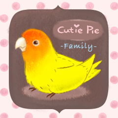 Cutie Pie the birdy family