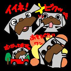 [LINEスタンプ] パグ犬