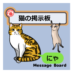 猫の掲示板