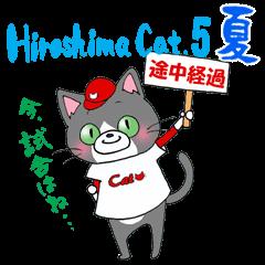 Hiroshima Cat 5 夏