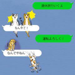関西弁の吹き出し子猫