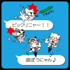 ★にゃん語の会話★(=^・^=)