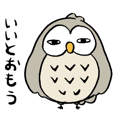 フクロウの日常2