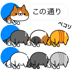 [LINEスタンプ] アイコンの中から猫だらけ (1)